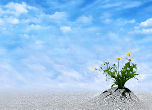 Discover Your New Spiritual Horizons